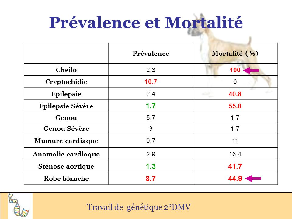 Prévalence et Mortalité