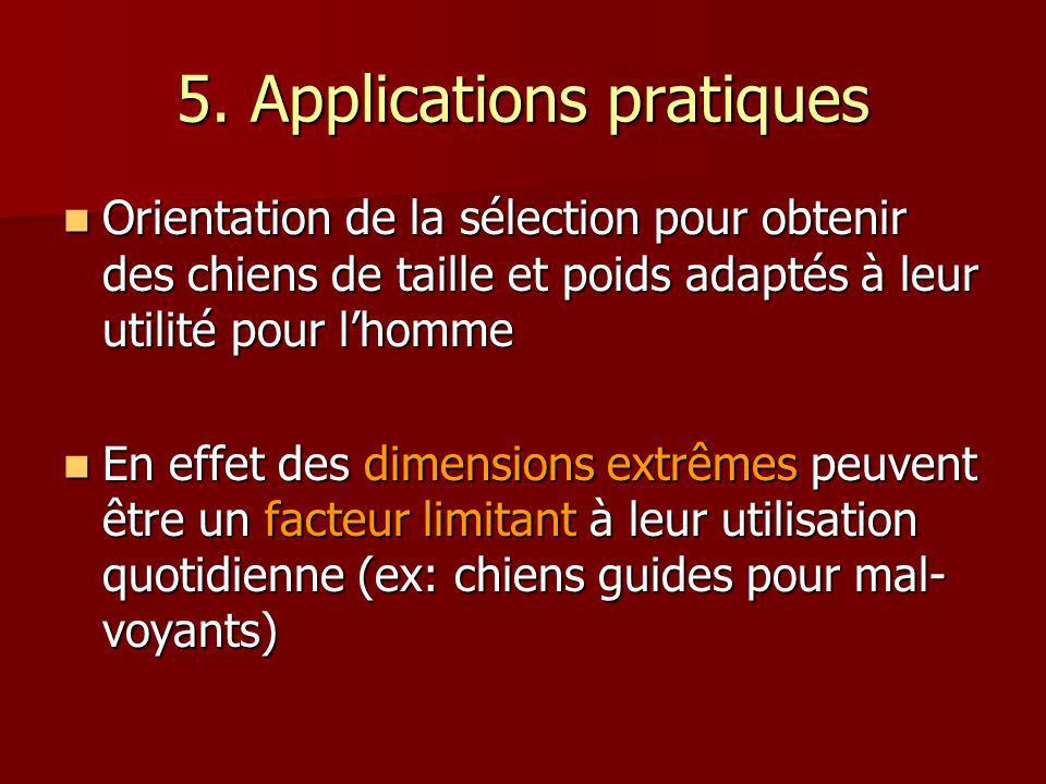 5. Applications pratiques