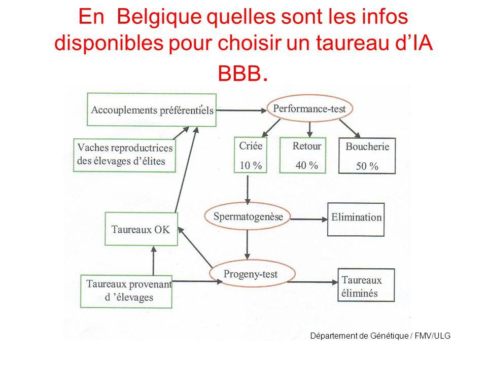 En Belgique quelles sont les infos disponibles pour choisir un taureau d'IA BBB.