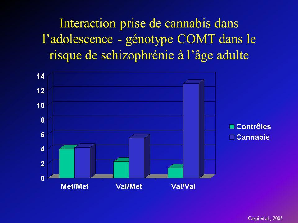 Interaction prise de cannabis dans l'adolescence - génotype COMT dans le risque de schizophrénie à l'âge adulte
