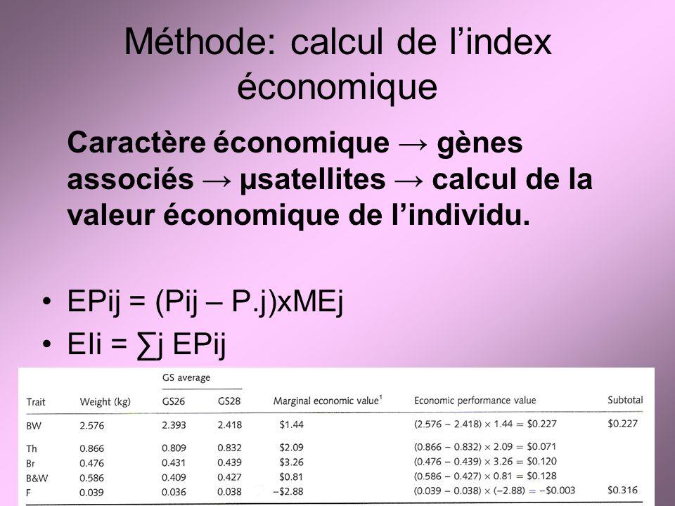 Méthode: calcul de l'index économique