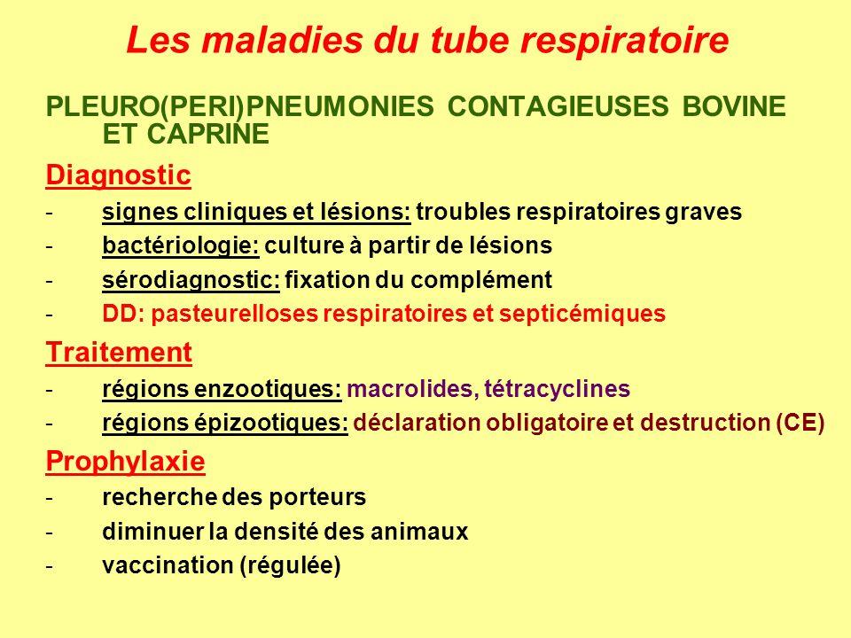 Les maladies du tube respiratoire
