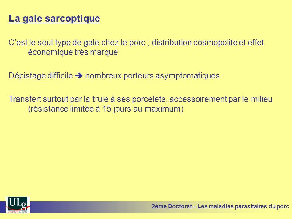La gale sarcoptique C'est le seul type de gale chez le porc ; distribution cosmopolite et effet économique très marqué.