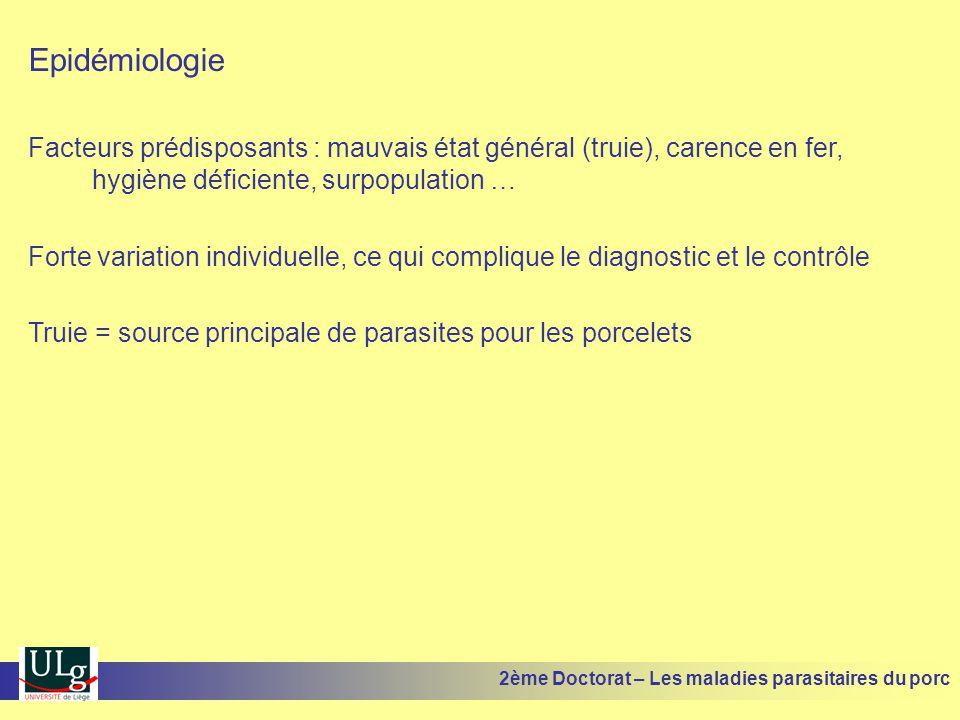 Epidémiologie Facteurs prédisposants : mauvais état général (truie), carence en fer, hygiène déficiente, surpopulation …