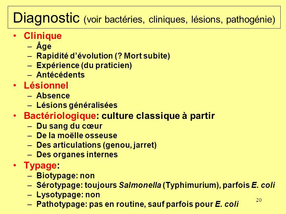 Diagnostic (voir bactéries, cliniques, lésions, pathogénie)