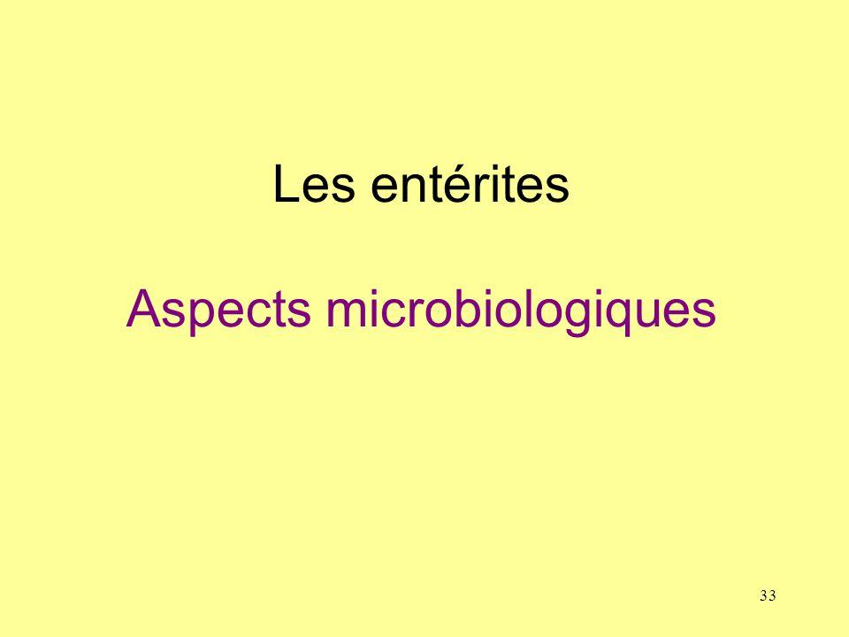 Les entérites Aspects microbiologiques