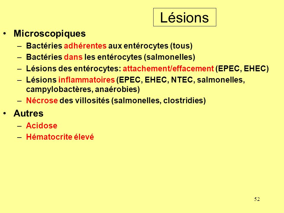 Lésions Microscopiques Autres