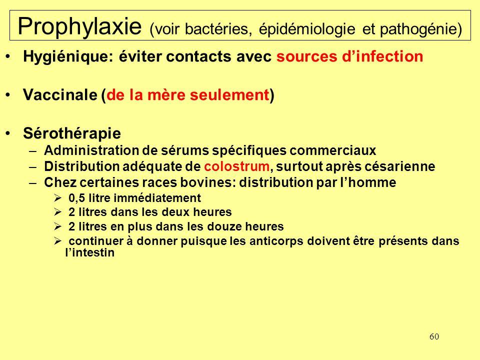 Prophylaxie (voir bactéries, épidémiologie et pathogénie)