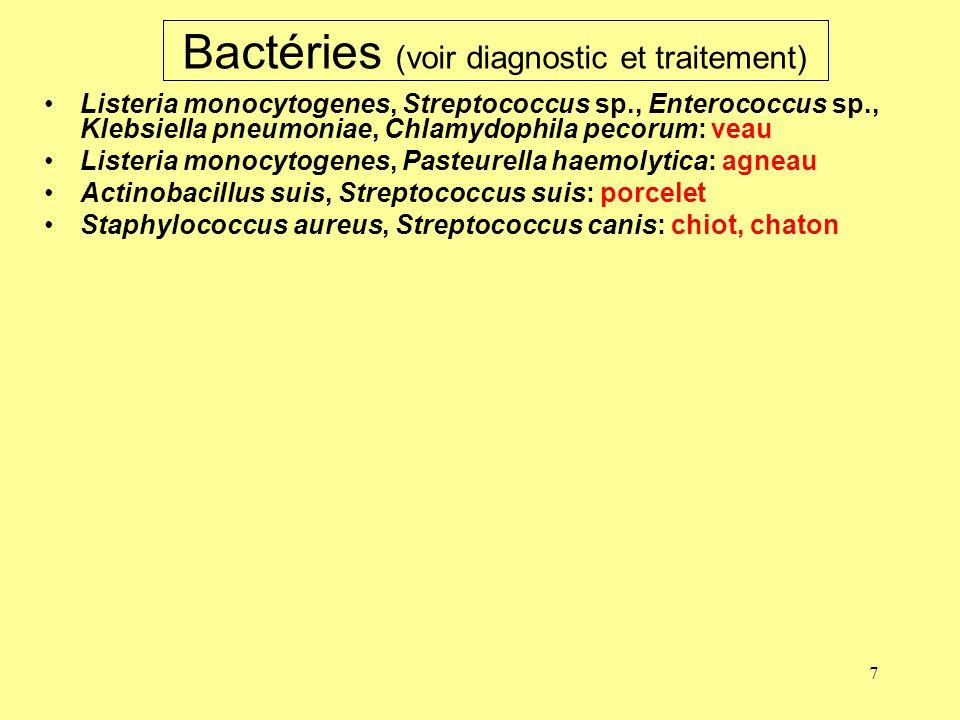 Bactéries (voir diagnostic et traitement)