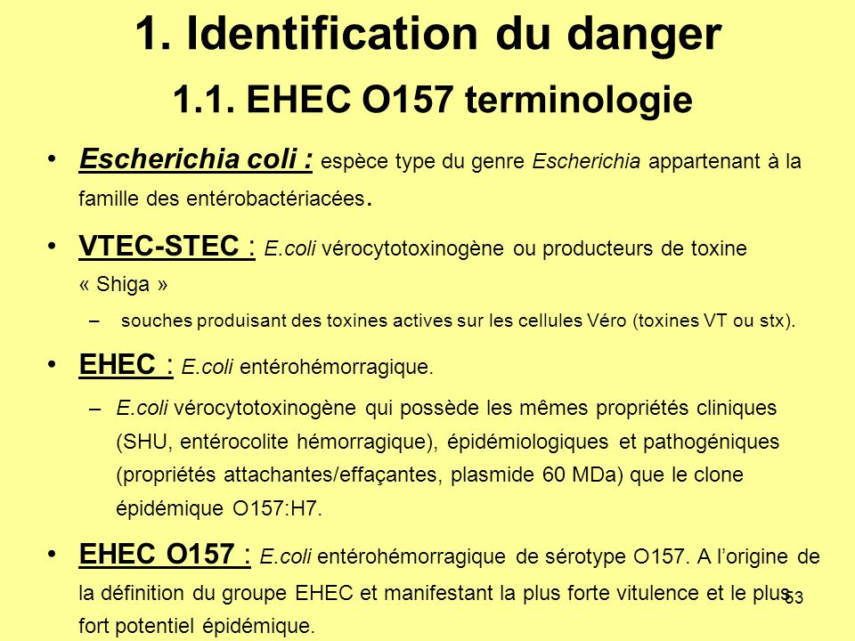 1. Identification du danger 1.1. EHEC O157 terminologie