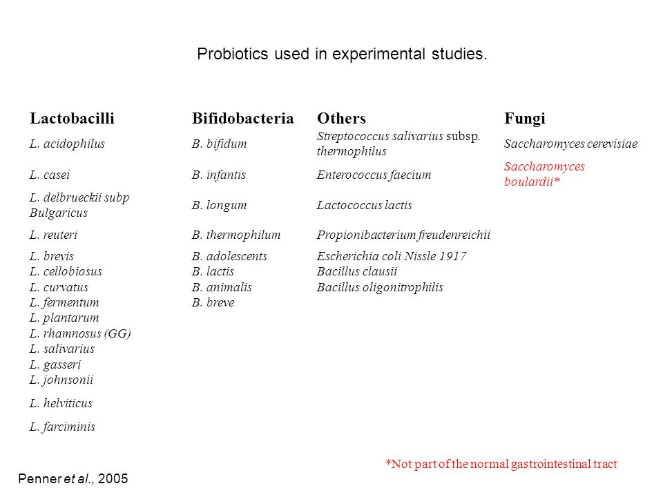 Probiotics used in experimental studies. Lactobacilli Bifidobacteria
