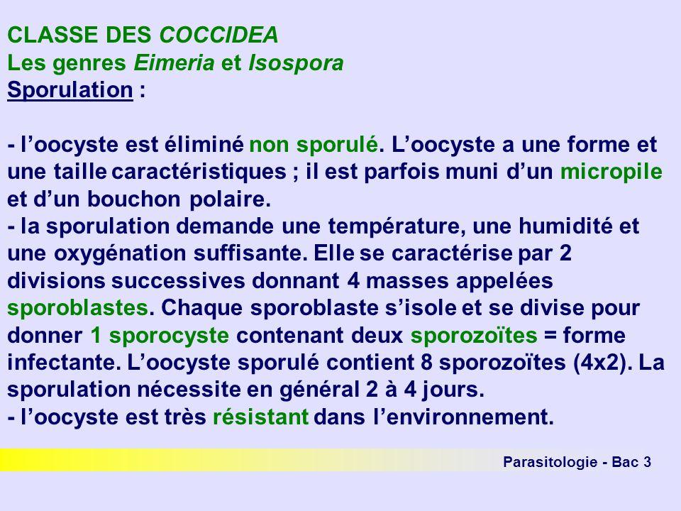 Les genres Eimeria et Isospora Sporulation :