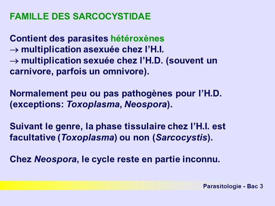 FAMILLE DES SARCOCYSTIDAE Contient des parasites hétéroxènes