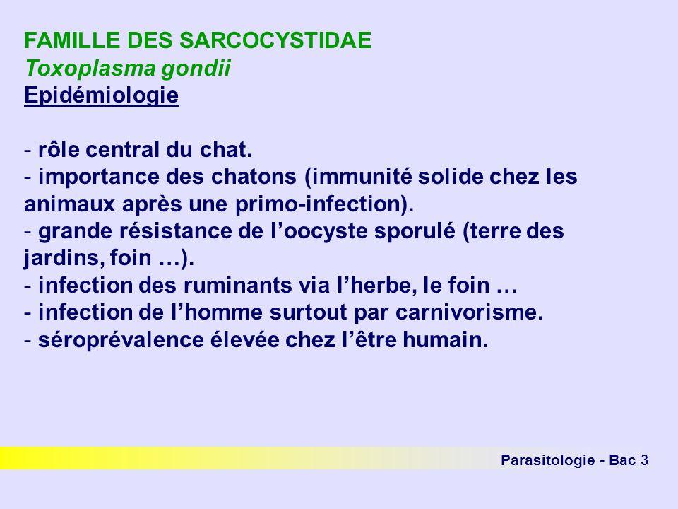 FAMILLE DES SARCOCYSTIDAE Toxoplasma gondii Epidémiologie