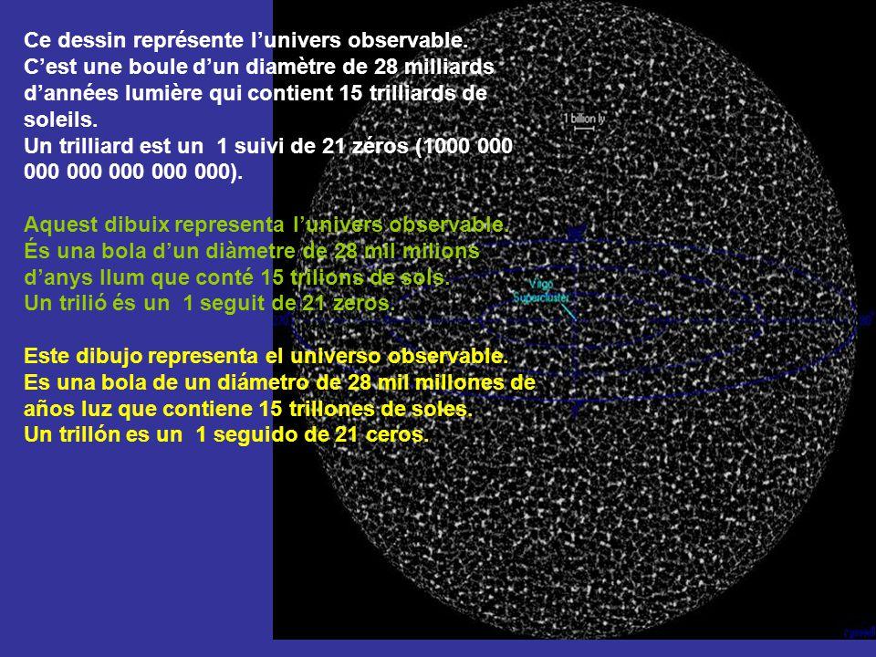 Ce dessin représente l'univers observable.