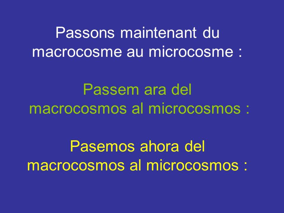 Passons maintenant du macrocosme au microcosme :