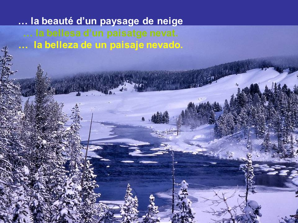 … la beauté d'un paysage de neige … la bellesa d'un paisatge nevat.