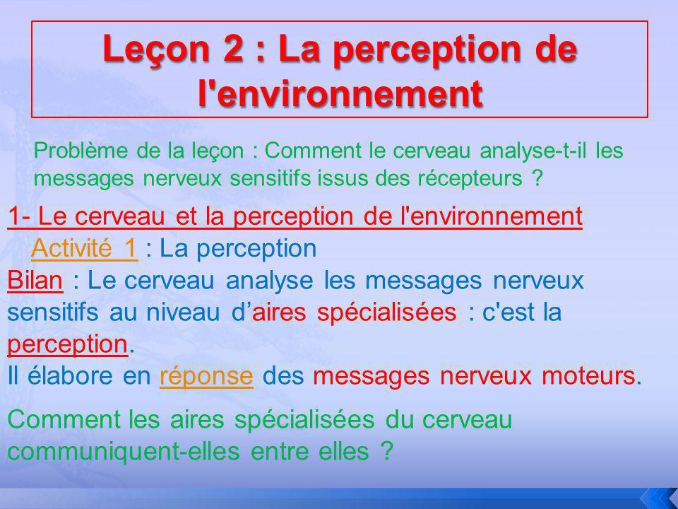 Leçon 2 : La perception de l environnement