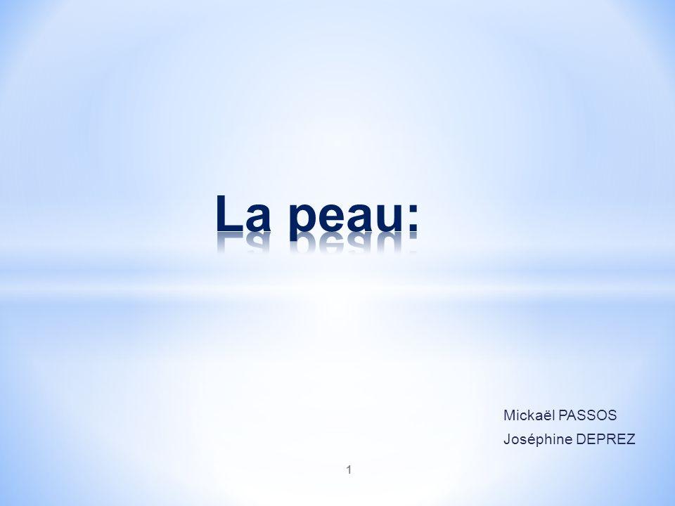 Mickaël PASSOS Joséphine DEPREZ