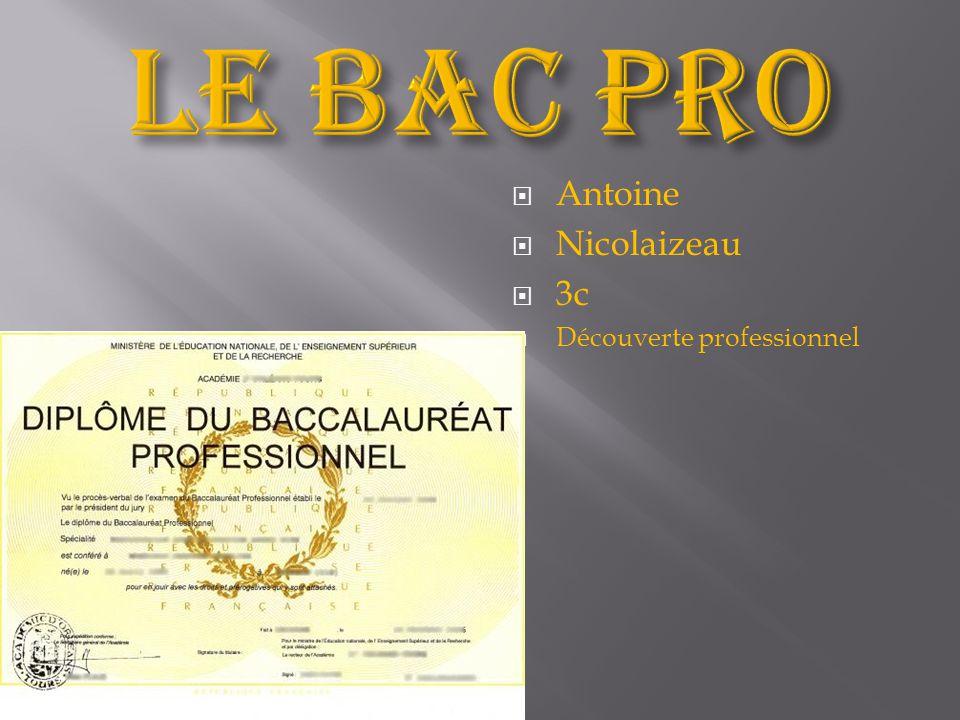 Le bac pro Antoine Nicolaizeau 3c Découverte professionnel