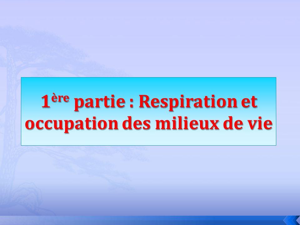 1ère partie : Respiration et occupation des milieux de vie
