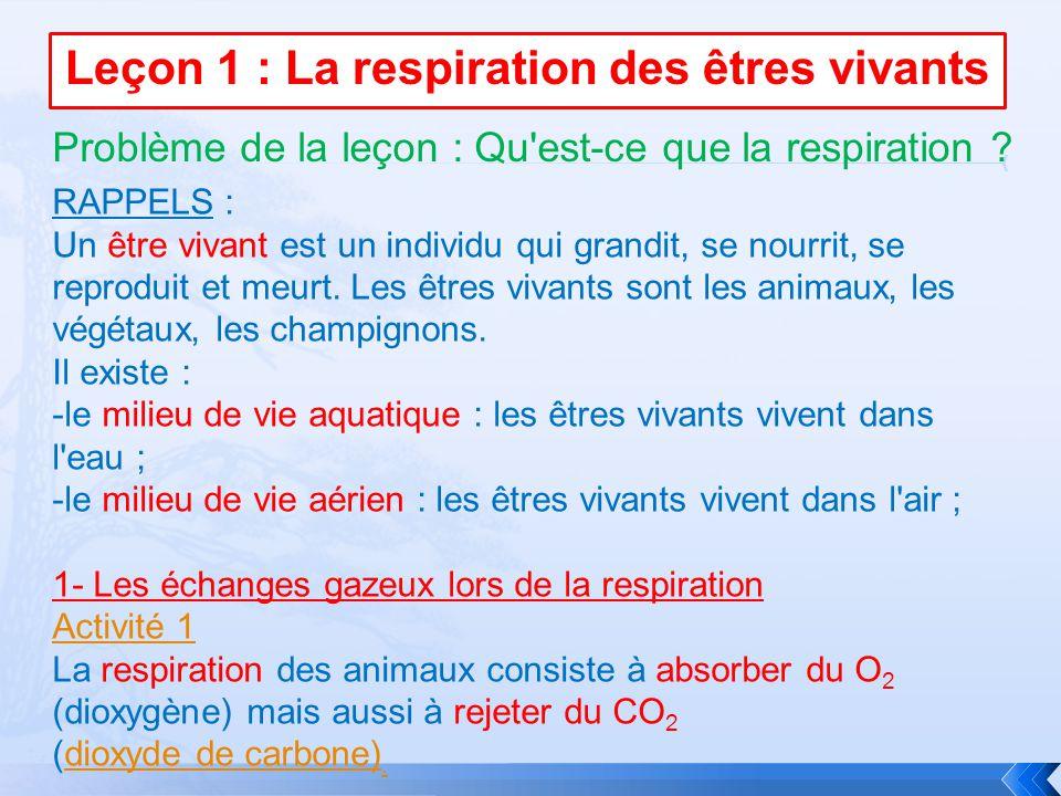 Leçon 1 : La respiration des êtres vivants