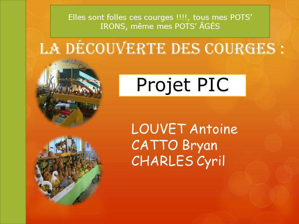 Projet PIC La Découverte des Courges : LOUVET Antoine CATTO Bryan