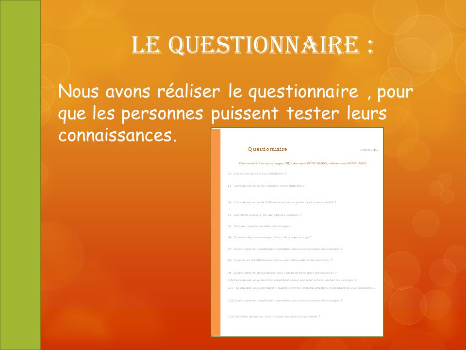 Le Questionnaire : Nous avons réaliser le questionnaire , pour que les personnes puissent tester leurs connaissances.