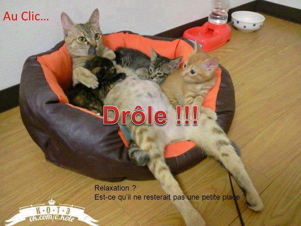 Drôle !!! Au Clic… Relaxation