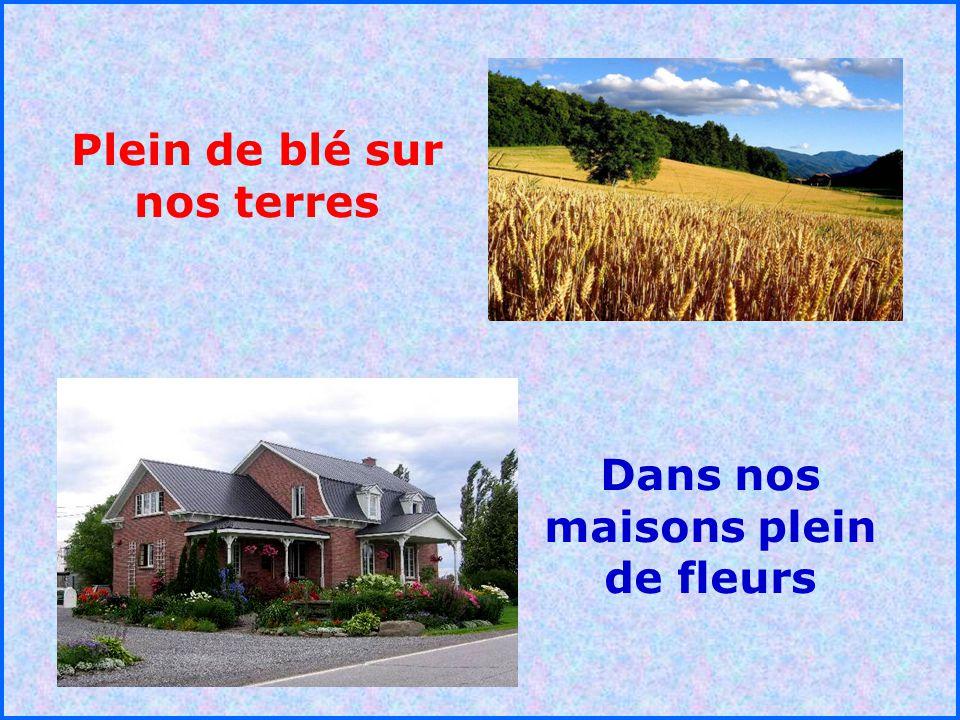 Plein de blé sur nos terres Dans nos maisons plein de fleurs