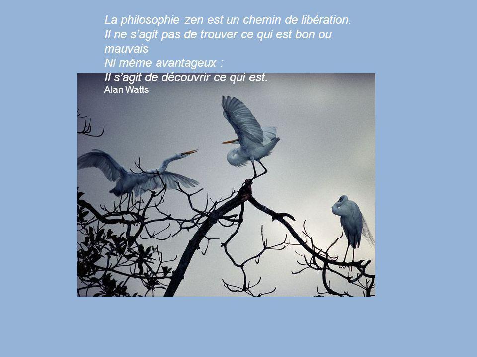 La philosophie zen est un chemin de libération.
