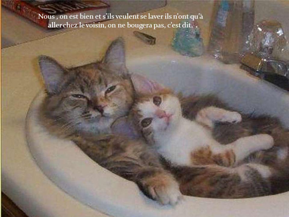 Nous , on est bien et s'ils veulent se laver ils n'ont qu'à aller chez le voisin, on ne bougera pas, c'est dit.