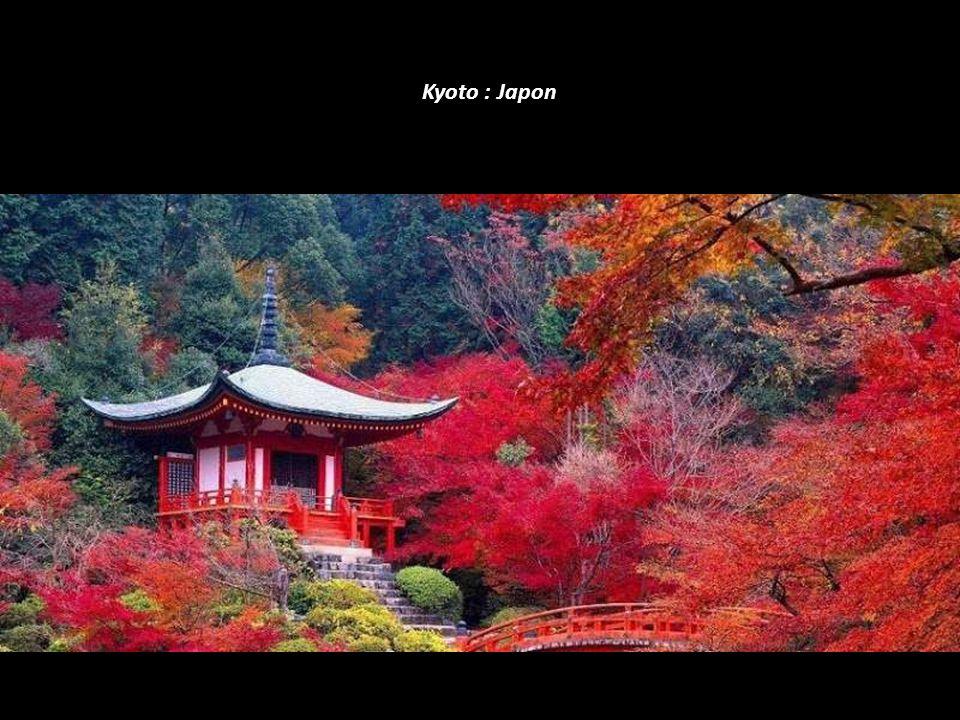 Kyoto : Japon