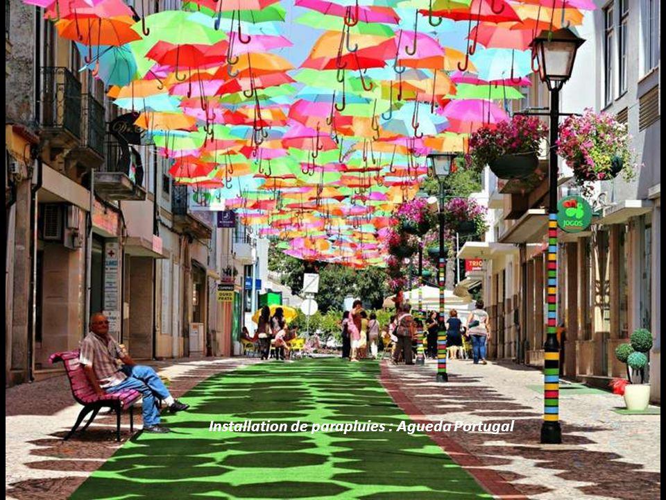 Installation de parapluies : Agueda Portugal