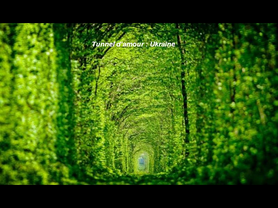 Tunnel d'amour : Ukraine