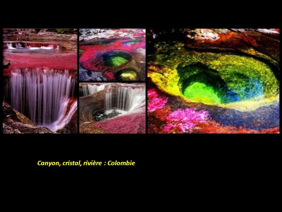 Canyon, cristal, rivière : Colombie
