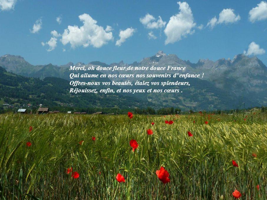 Merci, oh douce fleur de notre douce France