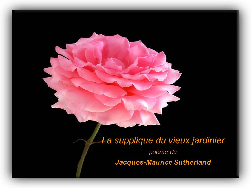Jacques-Maurice Sutherland