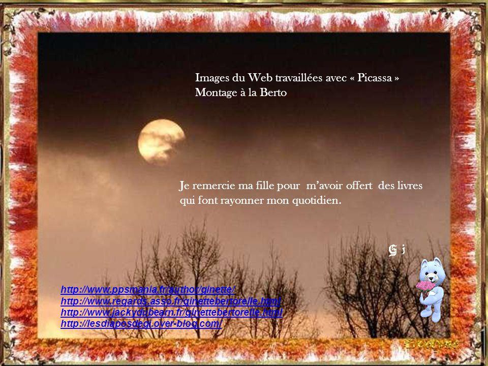 Images du Web travaillées avec « Picassa » Montage à la Berto
