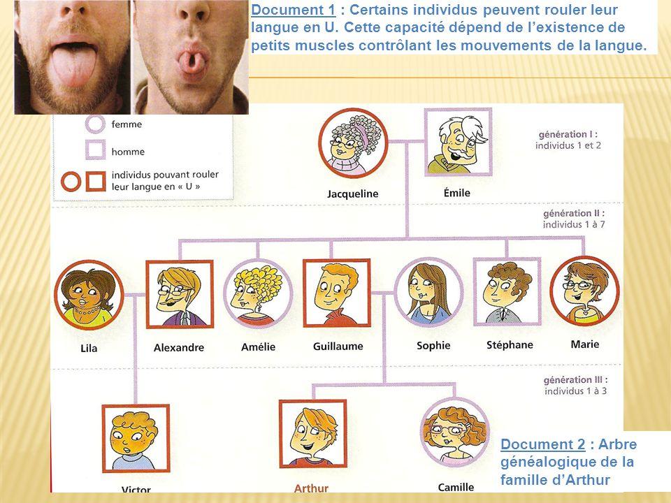 Document 1 : Certains individus peuvent rouler leur langue en U