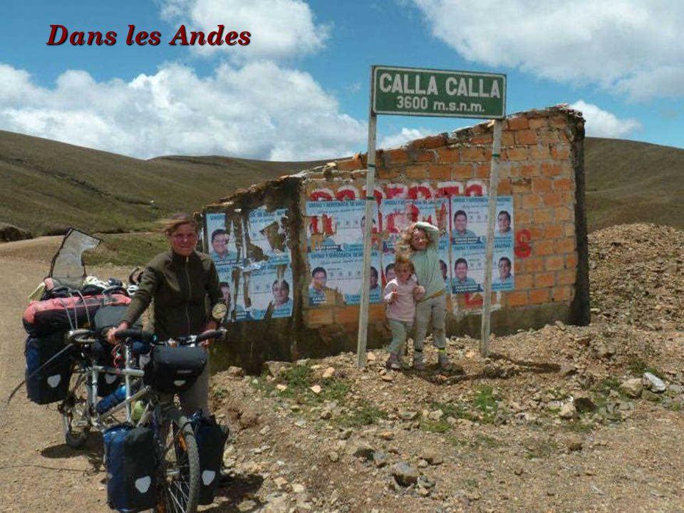 Dans les Andes