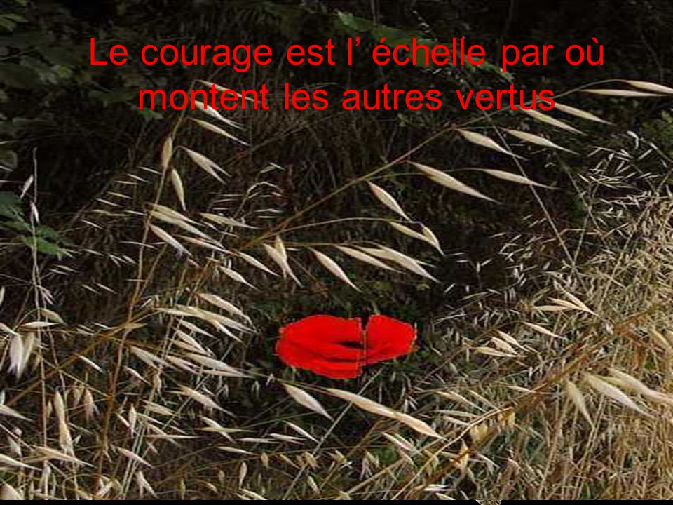 Le courage est l' échelle par où montent les autres vertus