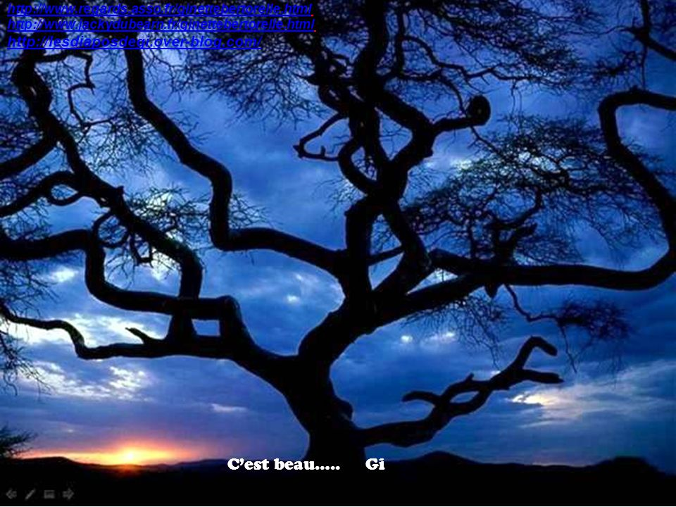 C'est beau….. Gi http://lesdiaposdegi.over-blog.com/