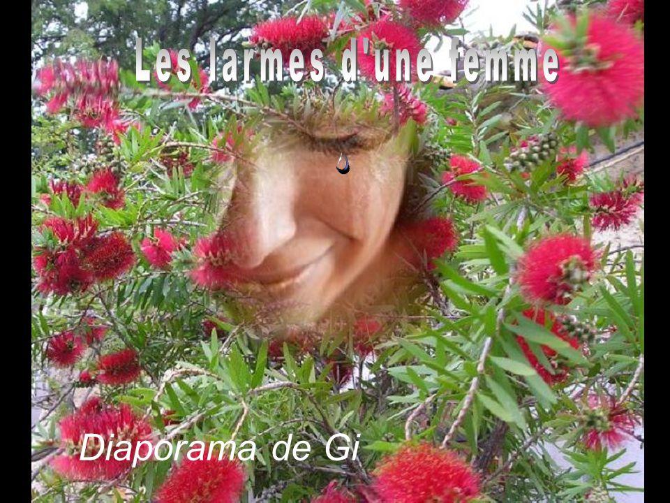 Les larmes d une femme Diaporama de Gi