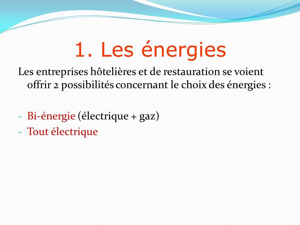 1. Les énergies Les entreprises hôtelières et de restauration se voient offrir 2 possibilités concernant le choix des énergies :