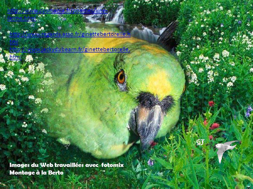 http://www.ppsmania.fr/poemes/une-larme.html http://www.regards.asso.fr/ginettebertorelle.html. http://www.jackydubearn.fr/ginettebertorelle.html.