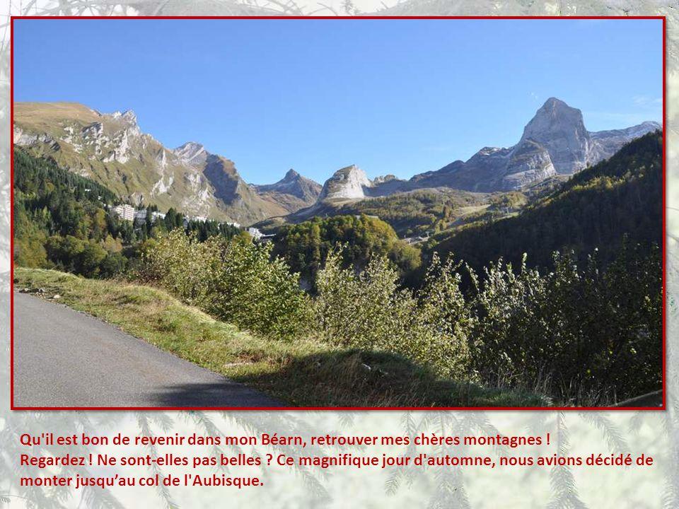 Qu il est bon de revenir dans mon Béarn, retrouver mes chères montagnes !