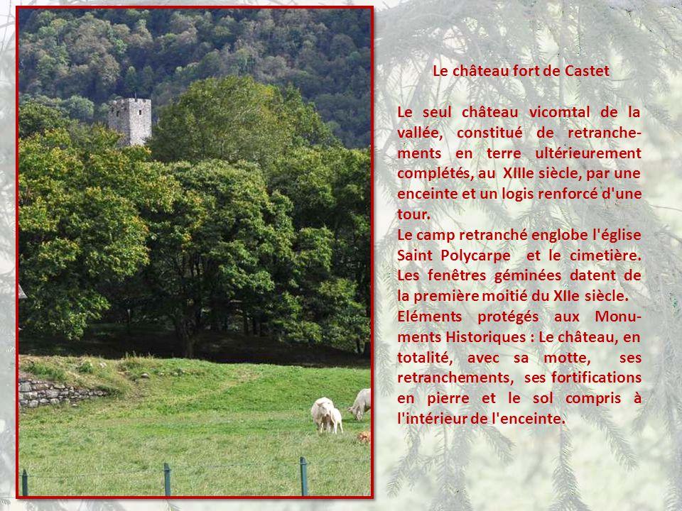 Le château fort de Castet