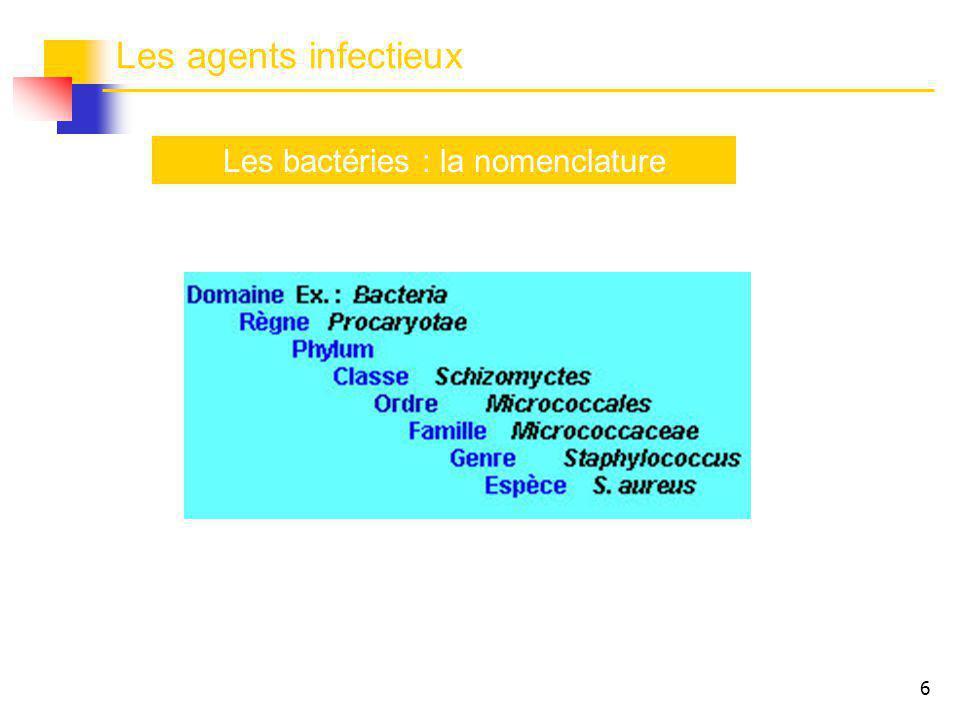 Les bactéries : la nomenclature