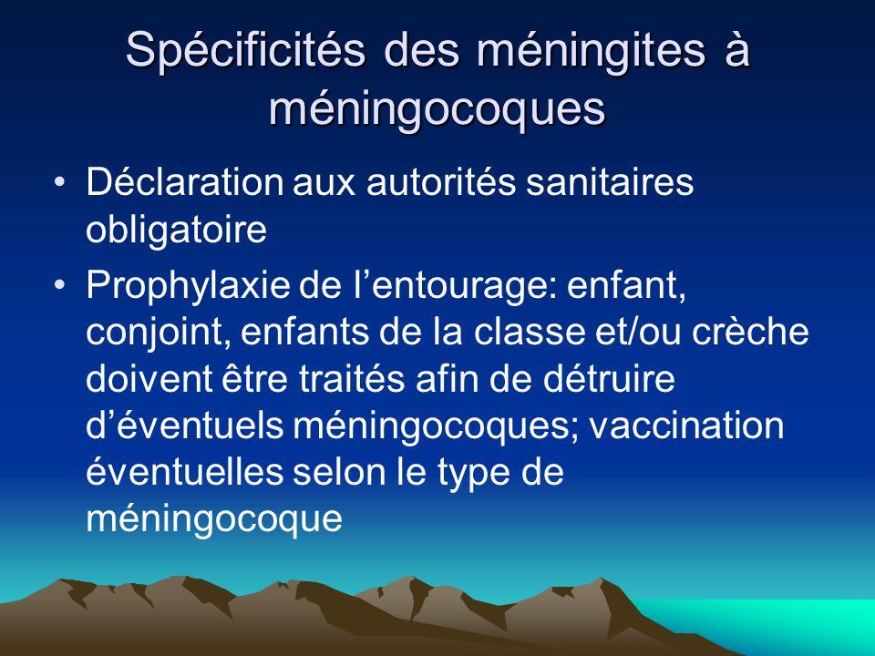 Spécificités des méningites à méningocoques
